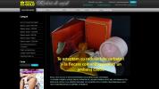 Magazin Online, Magazine Online:: Creare magazin online regalgold.ro