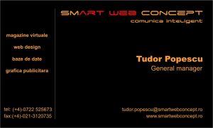 Carti de vizita - Smart Web Concept