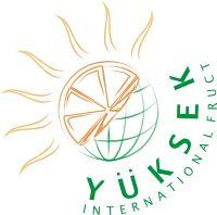 Logo Yuksrk International Fruct SRL